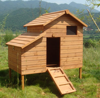 Sell chicken house