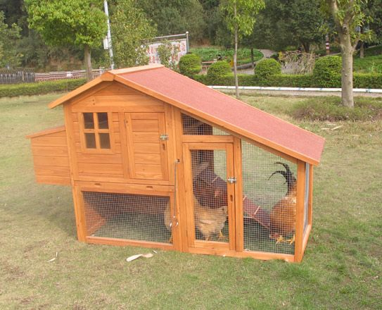 WOOD CHICKEN COOP